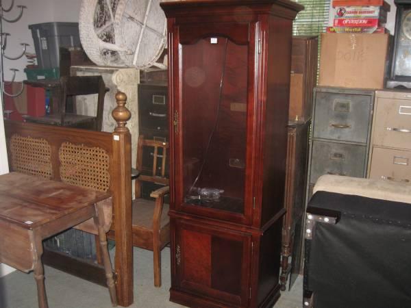 Lighted Mahognay Curio Cabinet - $75 (Jasper,Al.)