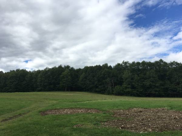 Photo Hunting land for lease - $2,000 (Chenango Forks)