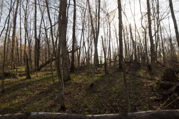 Photo Private half acre to build not far Pelican Lake wpayments (Breezy Point)