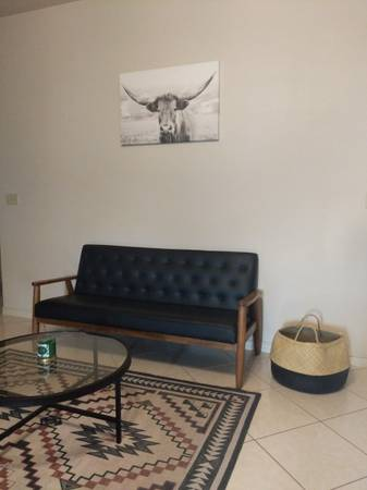 Photo Faux Leather Couch - BRAND NEW IN BOX - $350 (Brownsville)