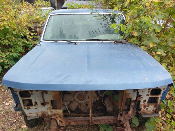 Photo Excellent Rust Free Southern Hood 1992-1997 Ford F150 F250 F350 Bronco - $150