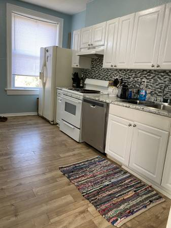 Photo Looking for easy going  tidy female roommate around June 1st - $550 (Tower Grove Park)