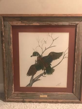 Photo Wood duck - $250