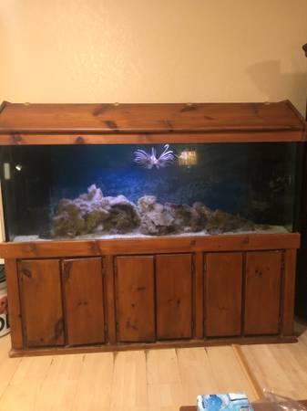 Photo 150 Gal Fish Tank - $700 (Sebring)