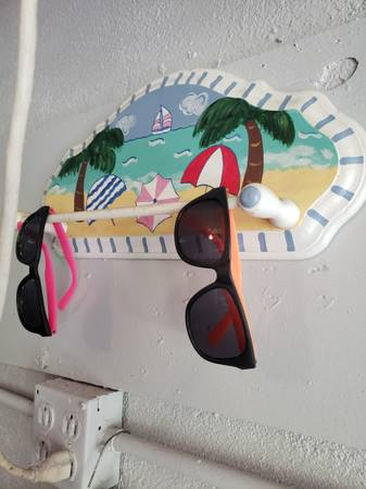 Photo Beach Sunglass rack for 5-6 sunglasses - $10 (New Port Richey)