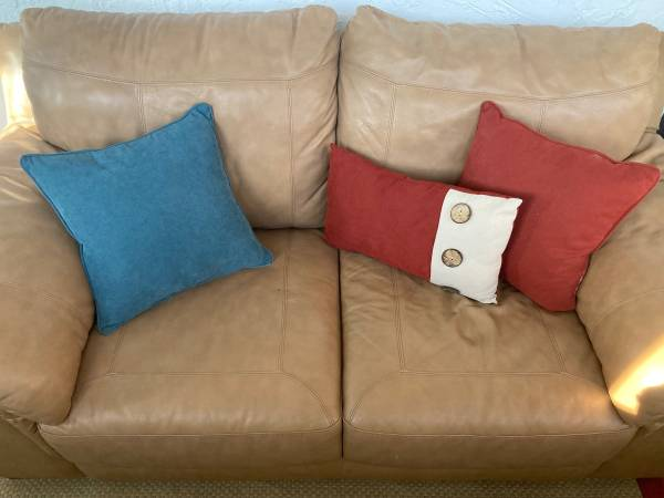 Photo Leather  Faux Leather Two-Seat Loveseat (Tarpon Springs)