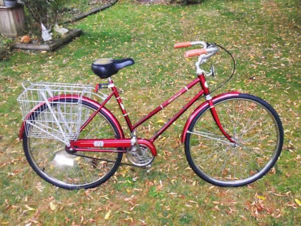 Free spirit adult three wheel bike