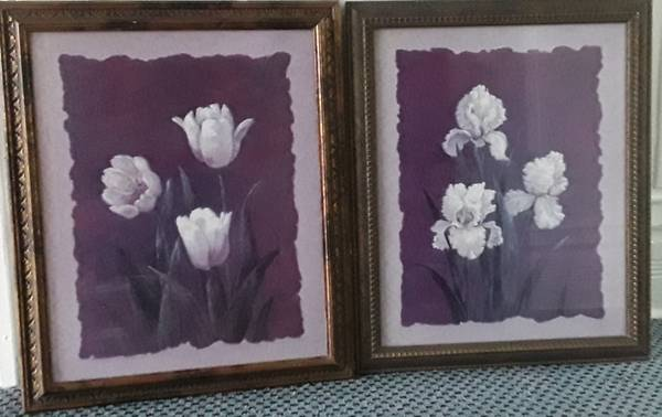 Photo Vivian flasch framed prints, Iris and tulips, $10 each 23in by 19 in - $10 (Beverly Morgan park Chicago)