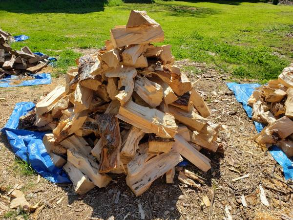 Photo small batches of firewood for sale - $100 (Chico)