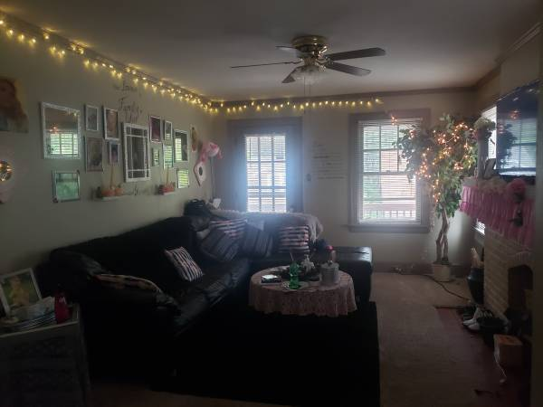 Photo Single woman looking for female roommate (Covington ky)