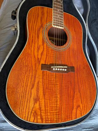 Photo Washburn D11AN Acoustic Guitar - $150 (Miamiville)