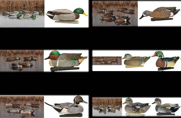 Photo Avian-X Duck Decoys (Gadwall, Pintail, Wood, Mallard, BWT, GWT) - $10 (Bryan, Texas)