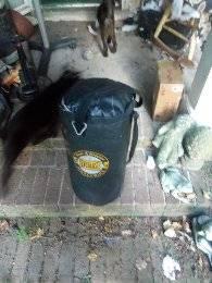 Photo 40 Lb. Everlast Heavy Bag - $30 (Irmo)