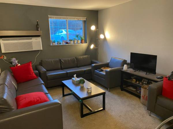 Photo Furnished 1 bedroom apartment for rent starting mid-May (Columbus)