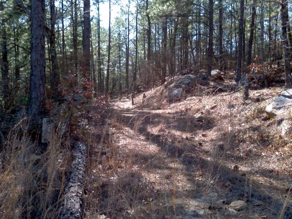 Photo 42 Wooded Acres on Pine Mountain $2,500 down  $499m (Sterrett)