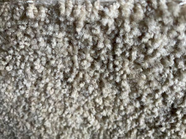 Photo New Shaw carpet 2460 sqft sand color light beigh - $1 (norc)