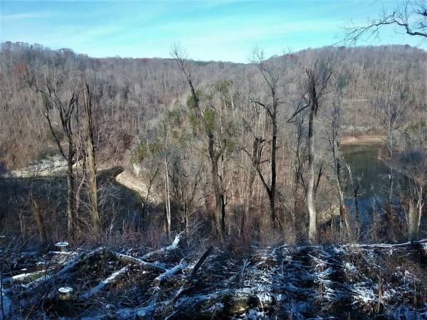 Photo 2 Lots 12.25 Acres and 12.84 Acres or 25 Acres On Pollard Rd (Walling)
