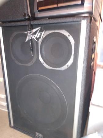 Photo Peavey 1820 speaker - $150 (Lafollette)