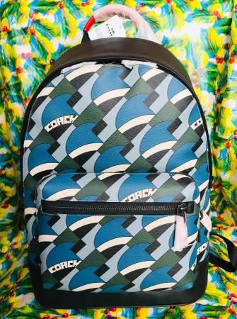 Photo COACH Backpack - $300 (Southside)