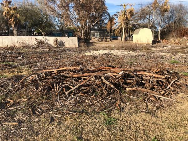 Photo FREE firewood (Corpus Christi)