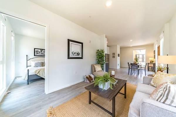Photo ($750 Cash  $800 Credit  No Deposit  Nov Free) 1 Bedroom Apartment (Southeast)