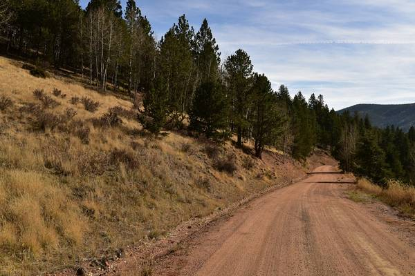 Photo Own 1.33 Acres in Teller County POWER is on the PAVED Road ((8 miles to Divide, CO))