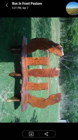 Photo Beuitful custom mesquite wood bench - $600 (Adkins)