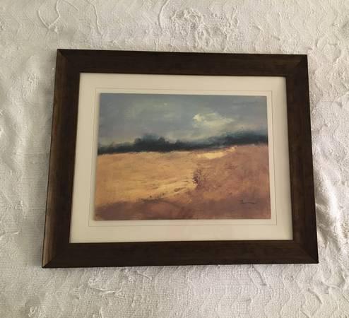 Photo Landscape Framed Wall Art - $35 (NC - Thousand Oaks)
