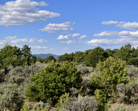 Photo Colorado Mountain  Forget About All Your Problems Own 5 Acres