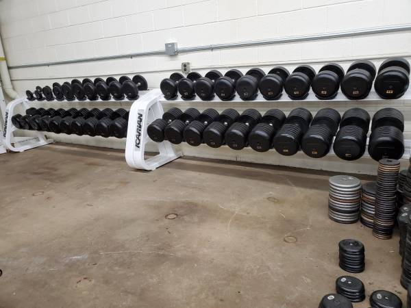 Photo 5-100lb Ivanko Rubber Pro Style Dumbbells WITHOUT Dumbbell Racks - $3150 (Canton, Michigan)