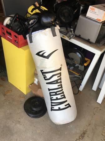Photo Everlast heavy bag - $60 (Royal oak)