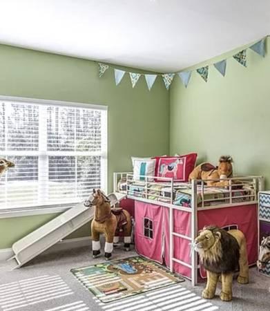 Twin loft bed with slide - $250 (Dothan, AL)