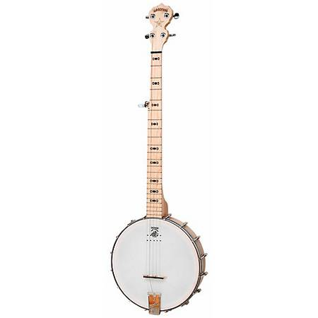 Photo Deering Goodtime Acoustic-Electric Banjo - $625 (Duluth)