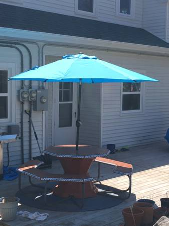 Photo Hand Painted Patio Picnic Table and Umbrella - $200 (Duluth)