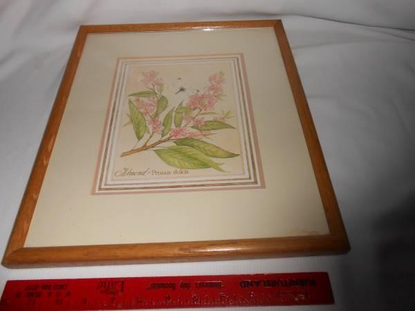 Photo 15 x 12 Pink Almond Flower Print Vintage SALE Wall Art 15 x 12 Frame - $3 (West Fenwick Island)