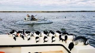 Photo 2 man Kalash Layout Boat for sale - $1,900 (Unionville, PA)
