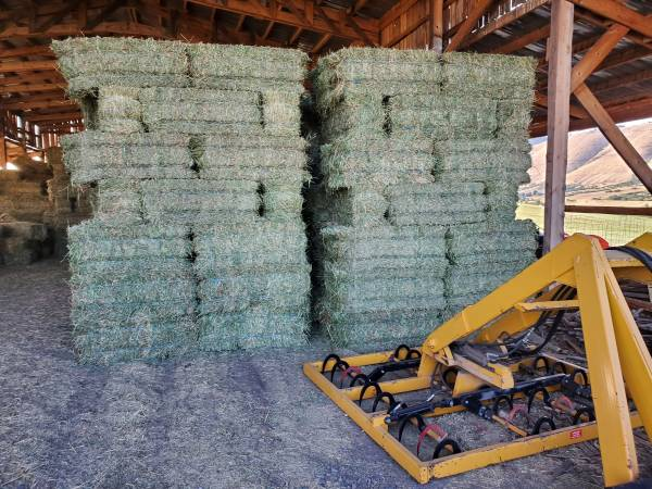 Photo Really Nice Alfalfa - 2nd cutting - $180 (Cove, OR)