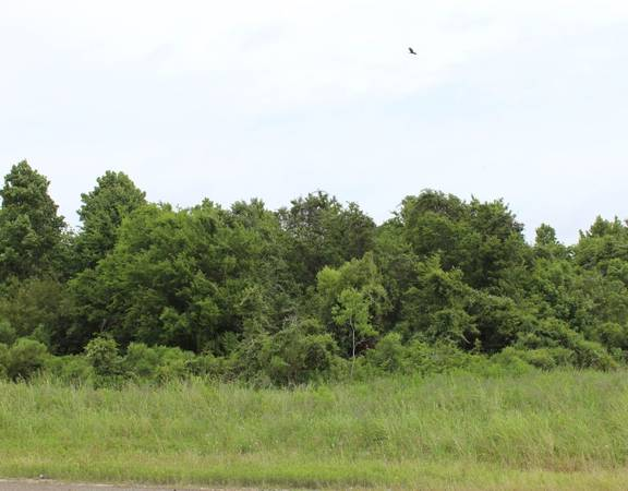 Photo Build your permanent home - 0.5 acres Smith County Tyler, TX  (.......CALL FOR PRICE.........)