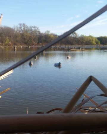 Photo Guided Airboat Duck Hunts  Duck Hunting Guide - $150 (Brazos River Near Waco, TX)