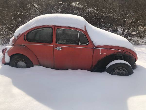 Photo 4 VW 71 SUPER BEETLES  tons of parts - $4000 (Van etten)
