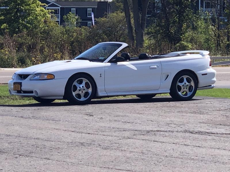 Photo Used 1996 Ford Mustang Cobra Convertible for sale
