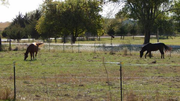 Photo Want a Home where You can Bring Your Horse (Wichita area)