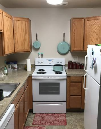 Photo 2 bed 1 bath apartment Female student looking for female roomate (Eugene)