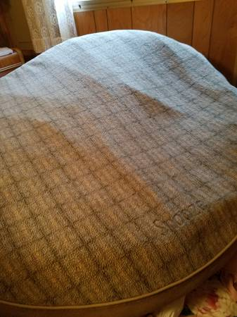 Photo Dog bed large to X-large new L. L. Bean for special puppy - $75 (Elmira)