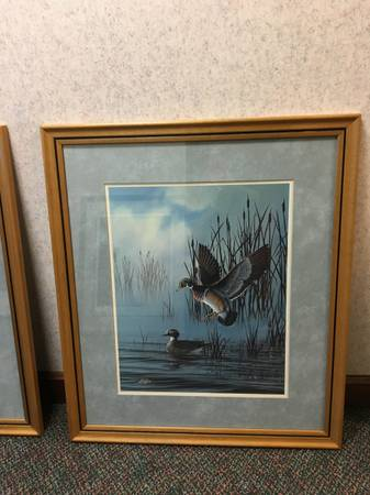 Photo 2 framed prints wood duck by Gary Fenske 32x20 - $100 (evansville)