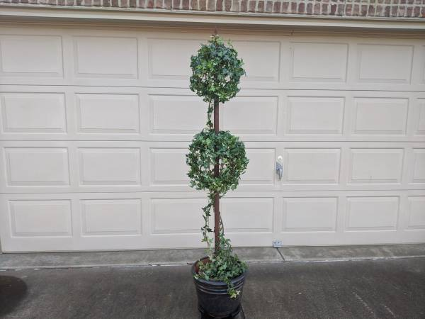 Photo 6 ft IVY TOPIARY WITH LARGE CLAY POT AND WOODEN STAND - $30 (Newburgh)