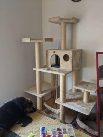 Photo Cat Tree (Aztec)