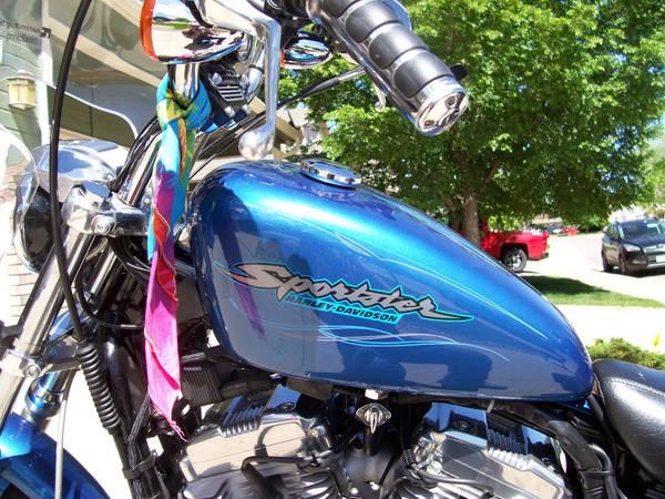 Photo 06 HD Sportster Custom 883 - $4,800 (LOVELAND)