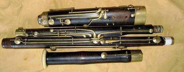 Photo lessons (bassoon) and coaching (woodwind ensemble) - $100 (loveland)