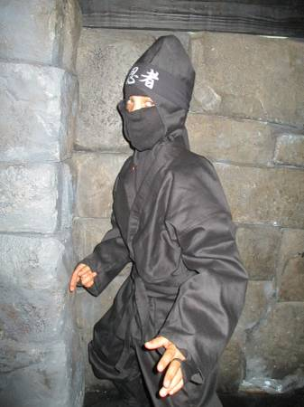 Photo TIGER CLAW - BLACK NINJA SUIT - $25 (FORT MYERS)